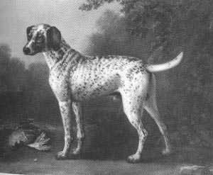 A pointer from the 1700s